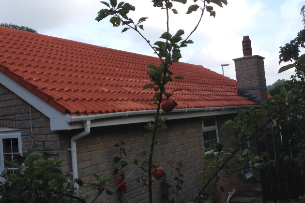 Services Offered By Inspector Moss Torquay Exterior
